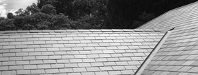 About Ian Denning Roofing Services